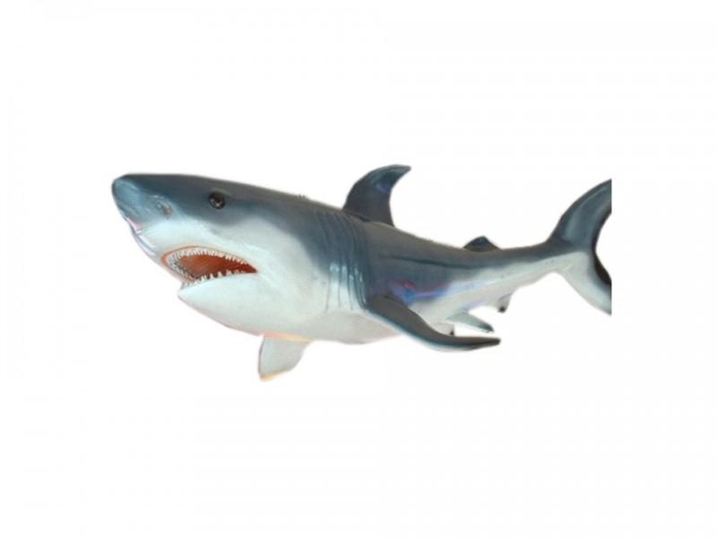 Location requin en r sine par naos location pour d cor th me for Requin decoration
